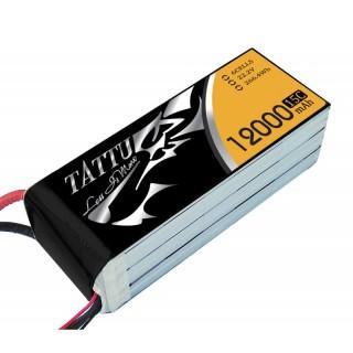ta-15c-12000-6s1p